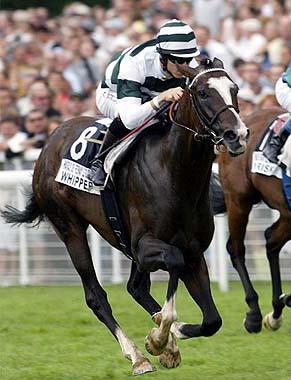 Des chevaux de courses victimes d un incendie - Course de chevaux table de multiplication ...